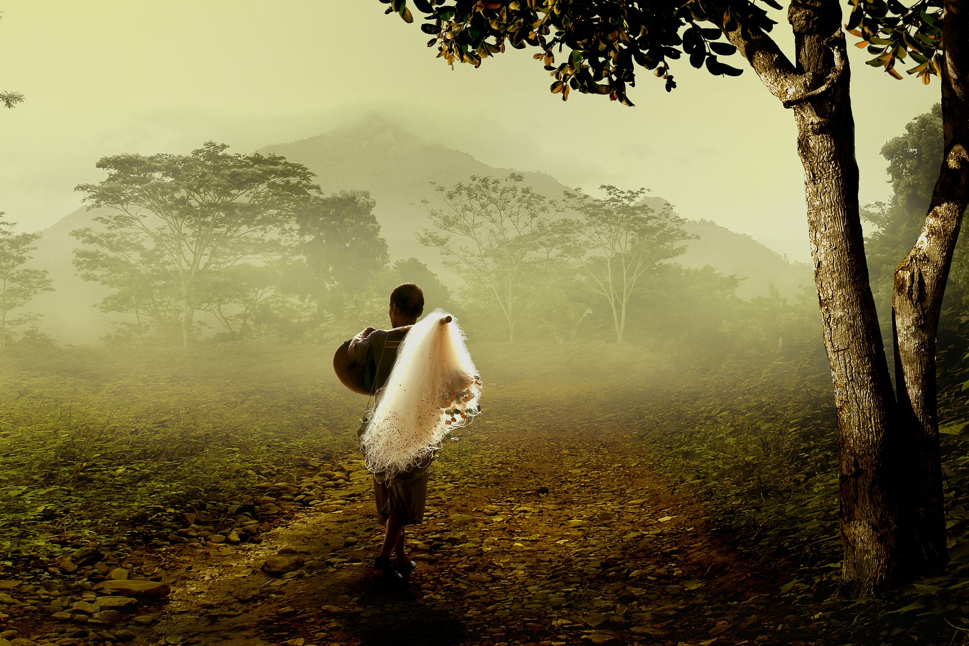 Man walking into the forest (Credit: pixabay/Herriest)